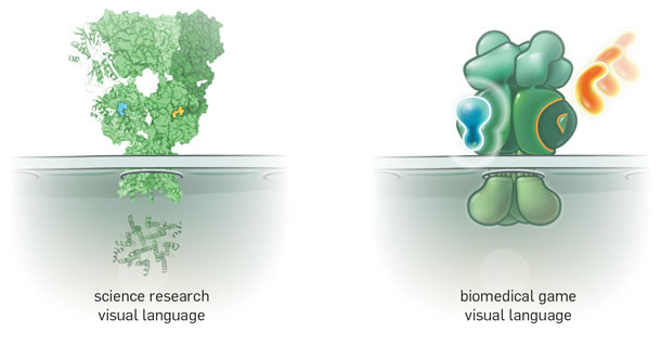 Two examples of visual language from science research and biomedical games