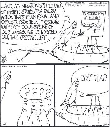 a bird explaining Newton's Third Law of Motion and how it relates to flight.  The other birds don't understand.  The instructor finally says