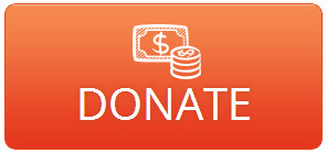 Donate button on website