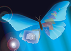 A butterfly with tech buttons on its wings