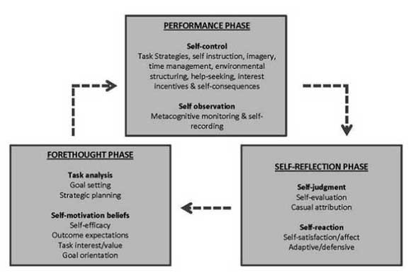A diagram illustrating Zimmerman and Campillo's three cyclical phases of self-regulation theory, described below.