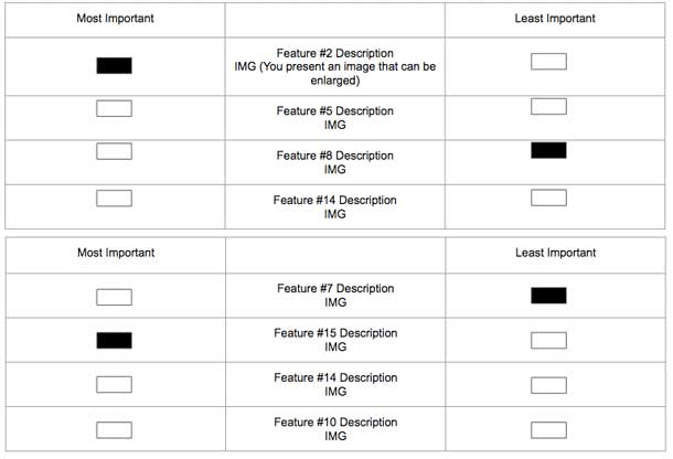 """Three columns: In the center is a list of product options (with the product name, short description, and an image). Far left column is labeled """"least important,"""" far right column is labeled """"most important"""" with selection boxes for each product."""