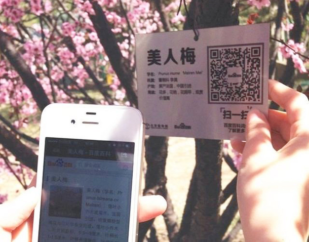 A user scans a QR code hanging on a tree in the Beijing Botanical Gardens.